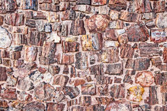 Petrified Tree Texture looking like stones. Stock Photo