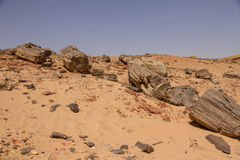 Petrified trees in Sudan stock photo