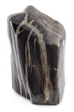 Petrified wood ancient piece black angle Royalty Free Stock Photos