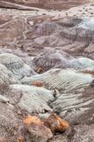 A View in the Petrified Forest National Park, Arizona royalty free stock photo