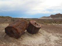 Petrified wood logs Petrified Forest National Park, Arizona, USA Stock Photo