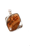 Petrified Wood Pendant Stock Photo