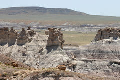 Petrified Wood and Rock Formations Stock Photos