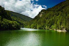 Petrimanu lake on summer Royalty Free Stock Photos