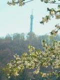 petrin布拉格塔 免版税库存照片