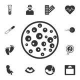 Petrischalenikone Einfache Elementillustration Petrischalen-Symboldesign vom Schwangerschaftssammlungssatz Kann für Netz und mobi vektor abbildung