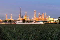 Petrochemical plant. The petrochemical plant in Thailand with pineaple plantation foreground Stock Image