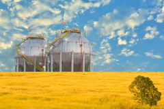 Petrochemical spherical shape tank. Royalty Free Stock Photography