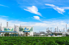 Petrochemicalväxt Arkivbilder