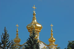 petrodvorets дворца церков грандиозные Стоковые Фотографии RF