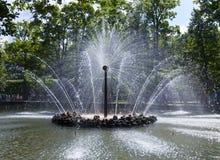 Petrodvorets 喷泉太阳 库存照片