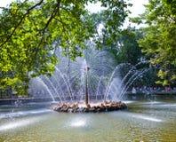 Petrodvorets 喷泉太阳 免版税图库摄影
