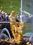 Petrodvorets Samson喷泉 免版税库存图片