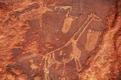 petroglif Zdjęcie Stock