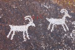Petroglifi del canyon di Grapvine Immagine Stock Libera da Diritti