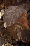 Petroglifi dell'intervallo di Coso Fotografia Stock Libera da Diritti