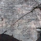 Petroglifi di Zalavruga. Alci e pesci Fotografia Stock