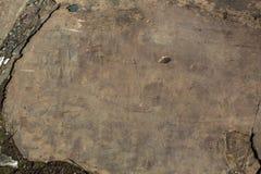Petroglifi Pitture antiche della roccia nelle montagne di Altai Fotografia Stock Libera da Diritti