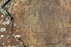 Petroglifi Pitture antiche della roccia nelle montagne di Altai Immagini Stock