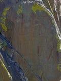 Petroglifi su una roccia Fotografia Stock