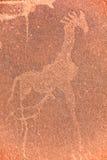 Petroglifi in Twyfelfontein Fotografia Stock Libera da Diritti