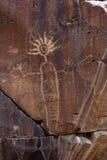 Petroglifo dell'intervallo di Coso Immagini Stock