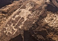 Petroglifo indio antiguo Foto de archivo