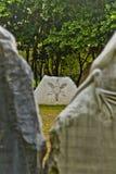 Petroglifos 1 de Taino Sun Imagen de archivo libre de regalías
