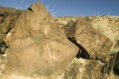 Petroglifos del nativo americano en el monumento nacional del petroglifo, fuera de Albuquerque, New México Fotos de archivo libres de regalías