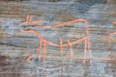 Petroglifos en Kvaloya en Noruega Fotografía de archivo libre de regalías