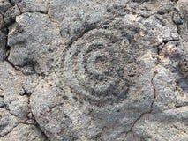 Petroglify przy Waikoloa petroglifu rezerwą w Hawaje Obraz Stock