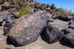 Petroglyph περιοχή, κάμψη Gila, Αριζόνα Στοκ φωτογραφίες με δικαίωμα ελεύθερης χρήσης