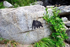 Petroglyph Royalty Free Stock Photo