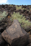 Petroglyph 4. Petroglyphs (rock carvings) from native americans found at Petroglyph National Monument in Albuquerque, New Mexico Stock Image