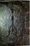petroglyph Fotografie Stock Libere da Diritti