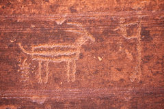 Petroglyph of antelope pooping Stock Images