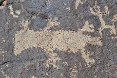 Petroglyph av en ödla Royaltyfri Bild