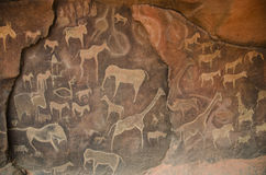 Petroglyph Cave Drawings. Modern petroglyth style cave drawings of various animals. This is kept in the Desert Dome at Omaha`s Henry Doorly Zoo and Aquarium is a Stock Photos