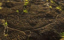 Petroglyph för tonfiskfisk, påskö, Chile Fotografering för Bildbyråer