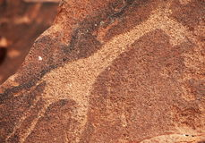 Petroglyph Royalty Free Stock Photography