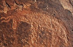 Petroglyph in Morocco Stock Images