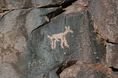Petroglyph on the rock Stock Image