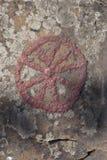 Petroglyph rock paintings Royalty Free Stock Image