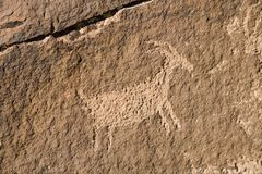 Petroglyph in Southern Utah. Petroglyph of some animal in the red rock of Southern Utah Stock Photos