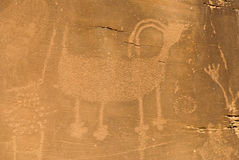Petroglyphe im Dinosaurier-Nationaldenkmal Stockfotografie
