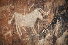 Petroglyphe mit Tieren auf dem Felsen Stockbild