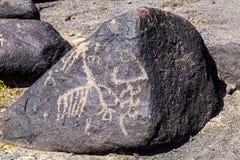 Petroglyphe-Standort, Gila Bend, Arizona Lizenzfreies Stockbild