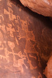 Petroglyphen Stockfotografie