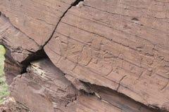 Petroglyphen Stockfotos