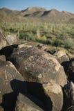 Petroglyphen auf Felsen in der Saguaro-Wüste stockfotografie